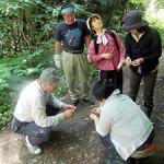白神自然学校が開催したクロモジの蒸留体験