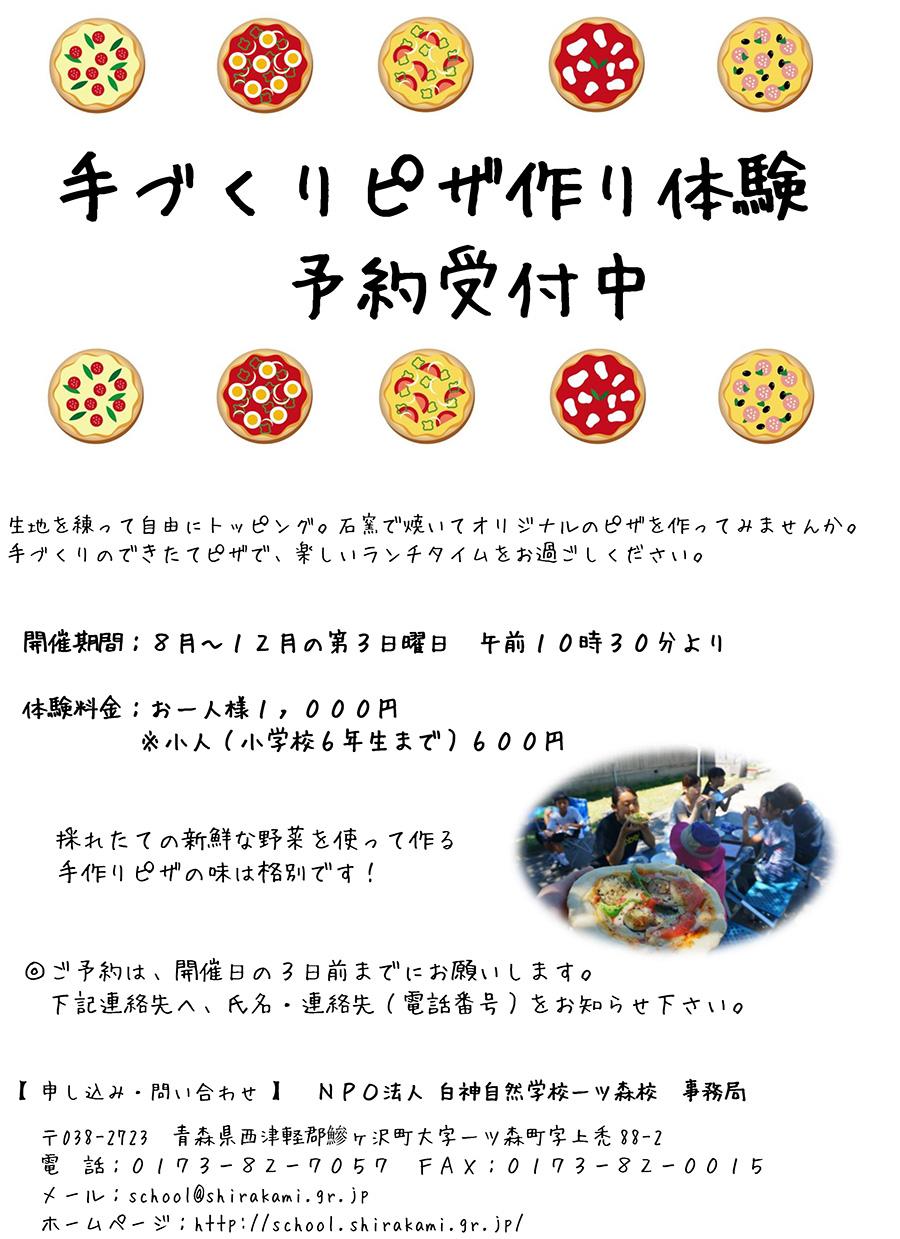 pizza201509