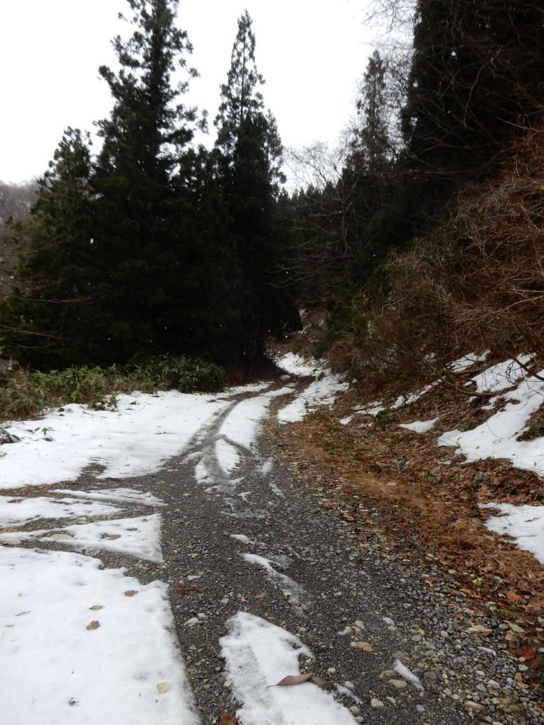 小森林道は、最終的には行き止まりとなる