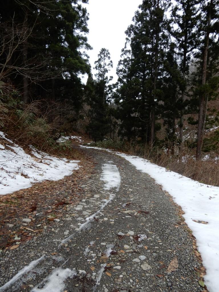 林道入り口は優しい砂利道だが、だんだん悪路になる