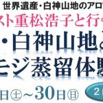 スペシャル企画のお知らせ